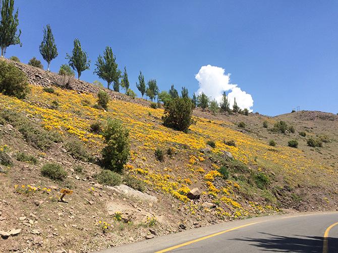 Estrada para Valle Nevado