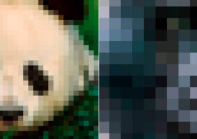 População Por Pixel mostra quantos animais da espécie existem