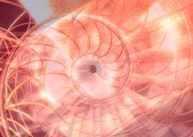 Uma explicação visual da sequência de Fibonacci na natureza