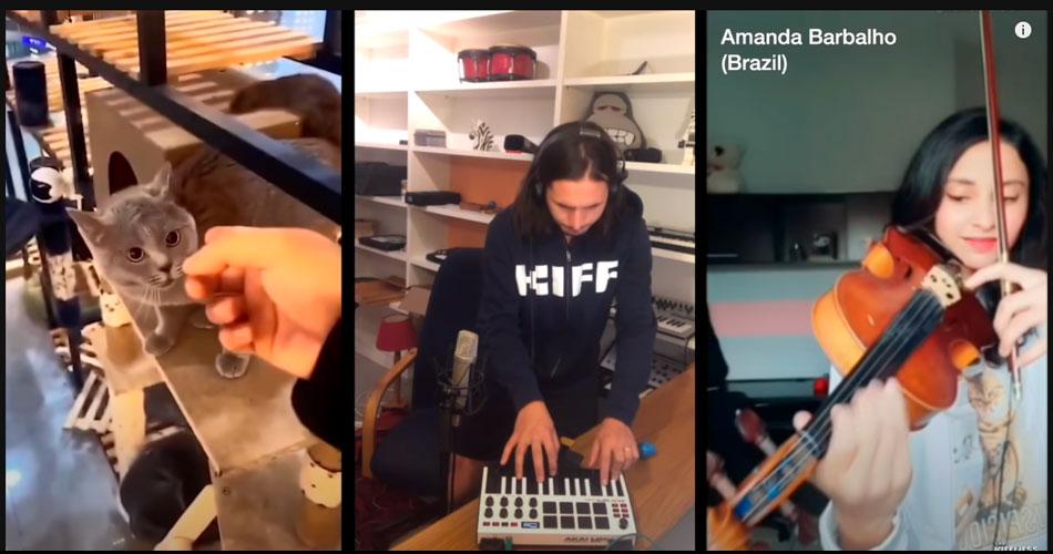 Remix com um gato junta músicos em torno do mundo